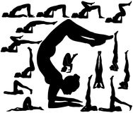 Silhouettes of woman in upturned yoga poses. Stock Photography