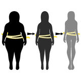 Silhouettes of women thick and thin. Vector Royalty Free Stock Photo