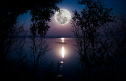 Silhouettes of woods and beautiful moonrise, bright full moon would make a great picture. Outdoors. Tree against sky over tranquil lake. Silhouettes of woods royalty free stock image