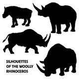 Silhouettes of woolly rhinoceros Stock Image