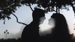 Silhouettes Of Young Couple Kissing. Passionate sensual attractive young couple in love in evening time stock video footage
