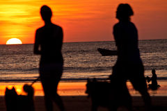 Silhouettes of young couple walking their dogs Stock Photography