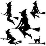 Silhouettes of young witch on broomstick. Royalty Free Stock Image