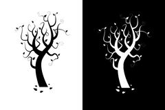 silhouetteswirltree Arkivfoton