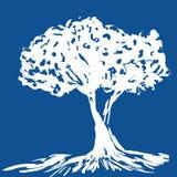 silhouettetree Arkivfoton