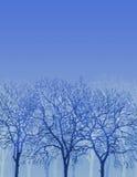 silhouettetrees Royaltyfri Fotografi