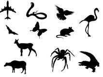 silhouettevektor royaltyfri illustrationer