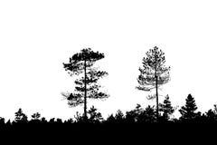silhouettevektorträ Royaltyfri Foto