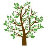 silhouettez l'arbre avec les feuilles brunes de tronc et de vert illustration de vecteur