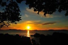 Silhouettez l'arbre et le coucher du soleil Images libres de droits