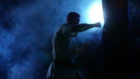 Silhouettez l'homme de karaté pratiquant sur le sac de sable dessus banque de vidéos