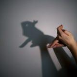 Silhouettez l'ombre du lapin photos stock