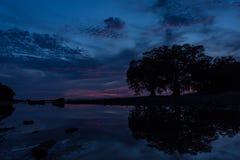 Silhouettez le ciel bleu-foncé avec une ombre d'arbre en mer Photos stock