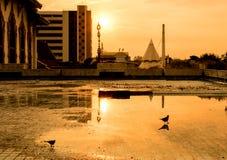 Silhouettez le ton trouble d'art de la terrasse sale avec le coucher du soleil sur le beau fond de ciel de soirée Images libres de droits