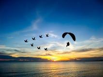 silhouettez les oiseaux de vol et le paramotor au-dessus du ciel de coucher du soleil de mer Photos stock