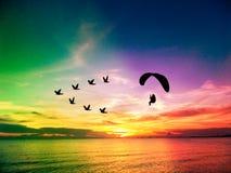 silhouettez les oiseaux de vol et le paramotor au-dessus du ciel de coucher du soleil de mer Image stock