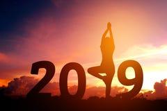 Silhouettieren Sie übendes neues Jahr des Yoga der jungen Frau 2019 Stockbild