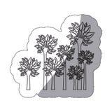 silhouettieren Sie Bäume mit Stamm in der Formhandikone vektor abbildung