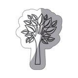 silhouettieren Sie Baum mit Blättern und Stamm in der Formhand stock abbildung