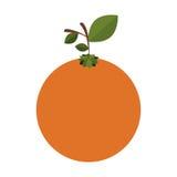 silhouettieren Sie buntes der orange Frucht mit Stamm und Blättern vektor abbildung