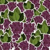 silhouettieren Sie buntes Muster von Bündeltrauben mit Stamm und Blättern stock abbildung