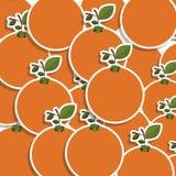 silhouettieren Sie buntes Muster von Orangen mit Stamm und Blättern lizenzfreie abbildung