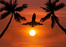 Silhouettieren Sie Flugzeugfliegen im Sonnenuntergang mit silhoutte Palmen Stockfoto
