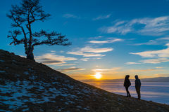 Silhouettieren Sie Szene des heiligen Baums am Kap Burkhan auf Olkhon-Insel lizenzfreie stockfotos