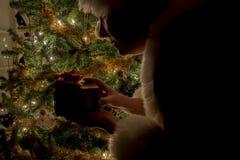 Silhouettte van Mevr. Claus met pakket door boom Stock Afbeelding