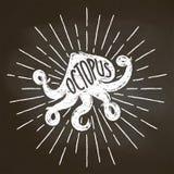Silhoutte мела осьминога с солнцем излучает на классн классном Хороший для дизайна, оформления, логотипов, или плакатов меню рест Стоковое Изображение