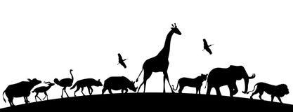 Silhoutte animal, animales africanos, ejemplo de los animales del safari stock de ilustración