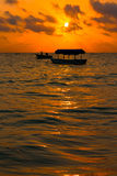 Silhoutte d'arbre au lever de soleil Photographie stock