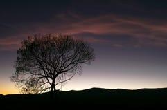 Silhoutte de la puesta del sol fotografía de archivo