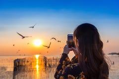 Silhoutte de volar de los pájaros y de la mujer joven que toman una foto en la puesta del sol fotografía de archivo libre de regalías