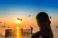 Silhoutte de voler et de jeune femme d'oiseaux au coucher du soleil Photo libre de droits