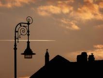 Silhoutte del tetto, della lampada di Sreet e dell'uccello al tramonto Fotografie Stock Libere da Diritti