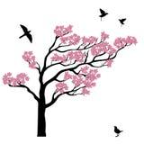 Silhoutte dell'albero di sakura con gli uccelli Immagini Stock Libere da Diritti