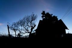 Silhoutte dell'albero e della Camera Immagine Stock