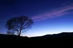 Silhoutte do por do sol no azul foto de stock