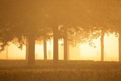 Silhoutte of person a misty morning Stock Photo