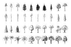 Silhoutte of trees on a white background vector illustration