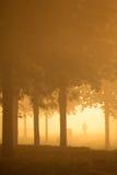 Silhoutte van persoon een nevelige ochtend stock afbeelding