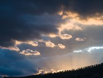 Silhouttes of trees on a hill in warm backlight of sunset and with storm clouds stock image