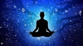 Silhuet People meditate with background animations 023