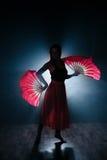 Silhueta bonita de uma menina que dança elegantemente no fumo e na névoa Fotografia de Stock