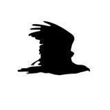 Silhueta da águia ilustração stock