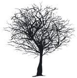 Silhueta da árvore ilustração stock