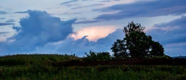Silhueta da árvore contra o fundo do céu tormentoso escuro dentro fotos de stock