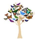 Silhueta da árvore da borboleta Imagem de Stock Royalty Free