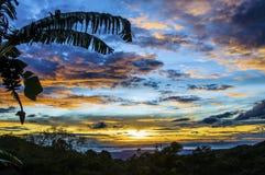 Silhueta da árvore de banana com fruto na frente de um céu azul nublado avermelhado do por do sol acima das águas pacíficas imagem de stock